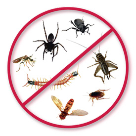 Pest and weed control